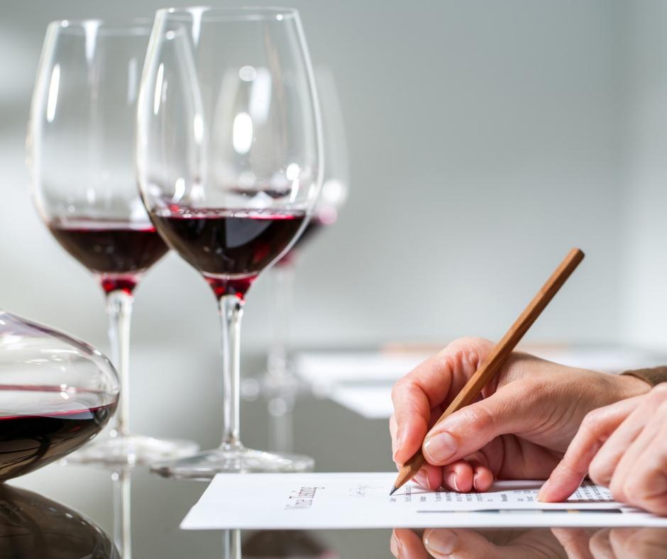cata de vinos - formación - bonestar's bistro